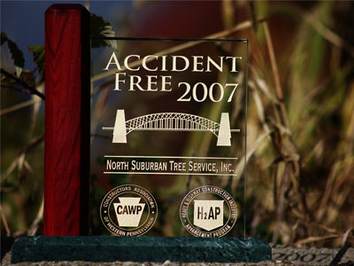 2007accidentfree